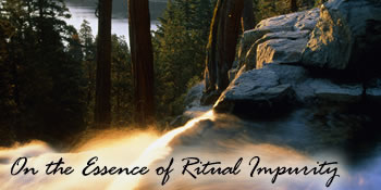 On the Essence of Ritual Impurity